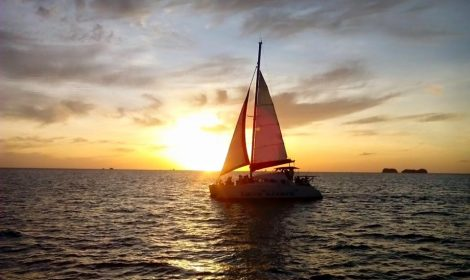 catamaran sunset sailing